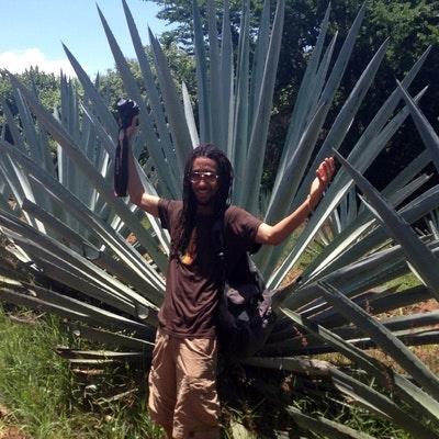 Omari Wheat's expert profile photo